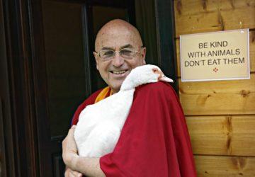 Matthieu Ricard et le droit des animaux